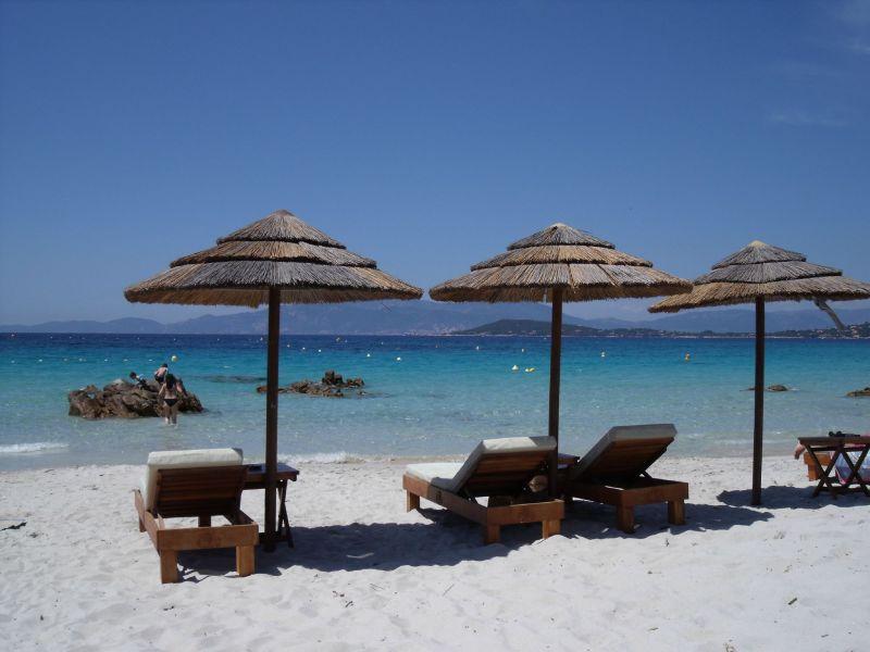 Beach Location Apartment 99887 Ajaccio