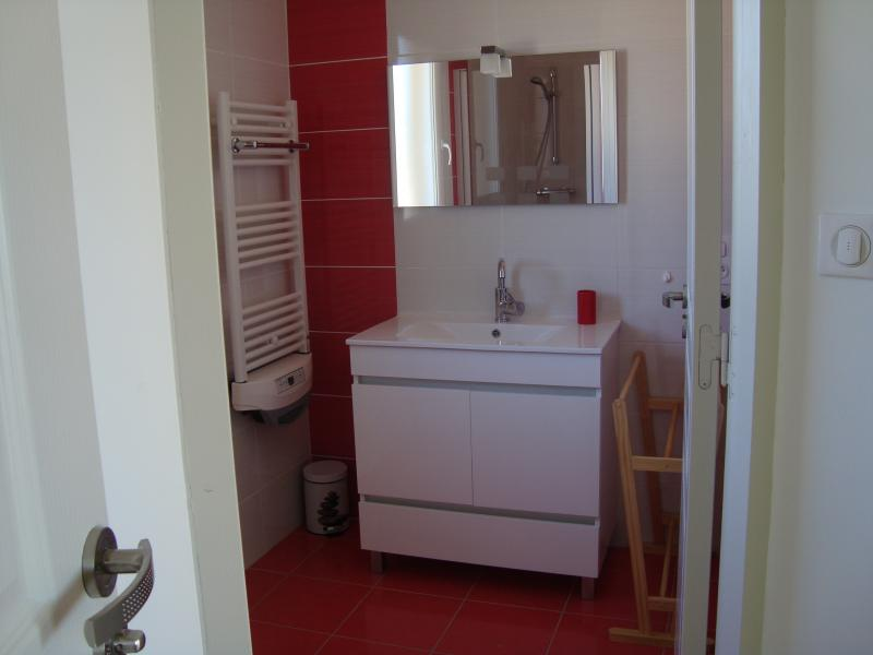 Washing facilities Location House 83784 Salignac-Eyvignes