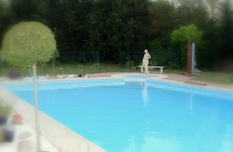 Swimming pool Location Self-catering property 85057 Isle sur la Sorgue