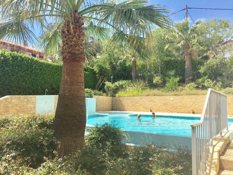 Swimming pool Location Studio apartment 67791 Mandelieu la Napoule
