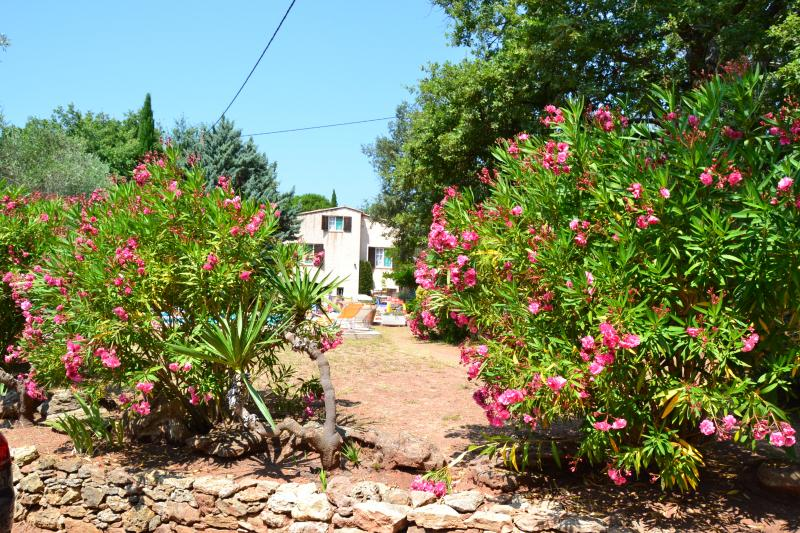 Outside view Location Apartment 74884 Fréjus