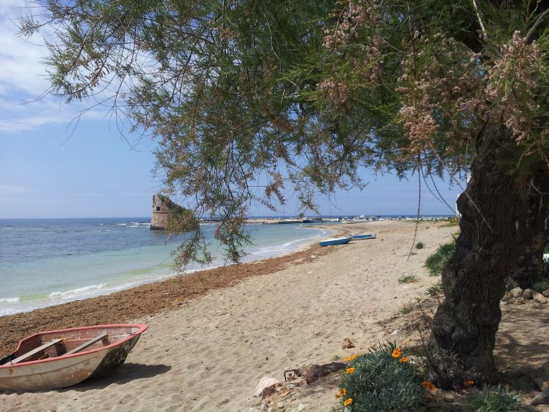 Beach Location Apartment 83807 Torre Pali