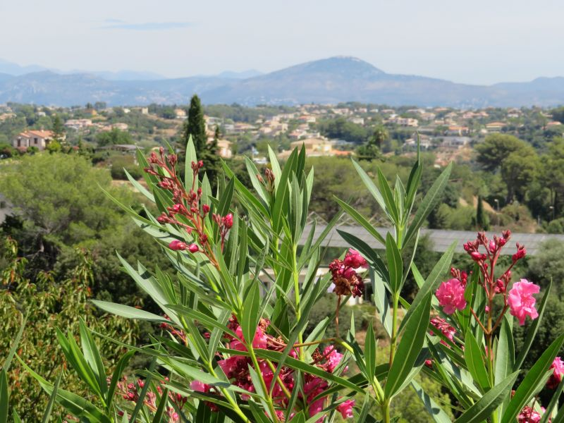 View from the property Location Studio apartment 92776 Cagnes sur Mer